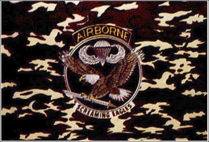 Flagge U.S. Airborne