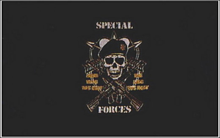 Flagge U.S. Special Forces