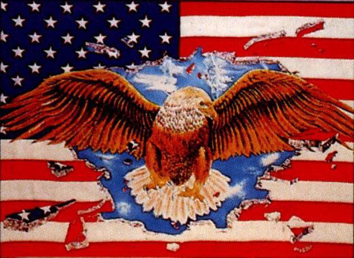 Flagge USA mit Adler