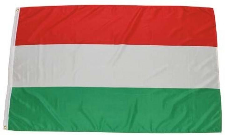Flagge Ungarn