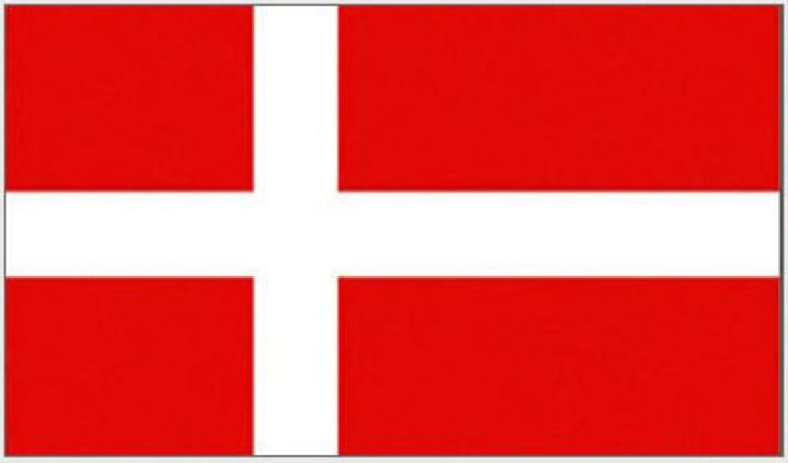 """Flagge Dä""""nemark"""