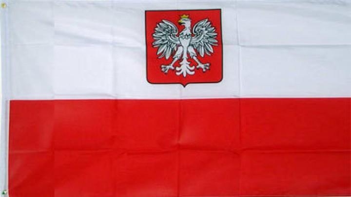 Flagge Polen mit Adler